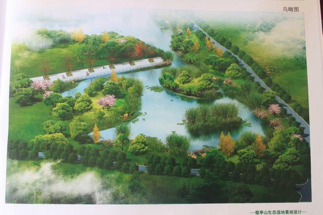 敬亭山生态湿地景观设计图